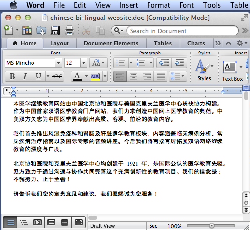 image of chinese text in a Microsoft Word document