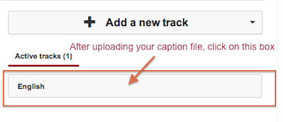 click the Add New Track button to add your caption file
